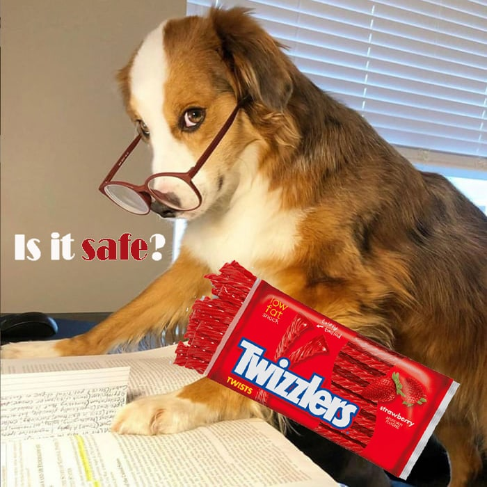 Can My Dog Eat Twizzlers