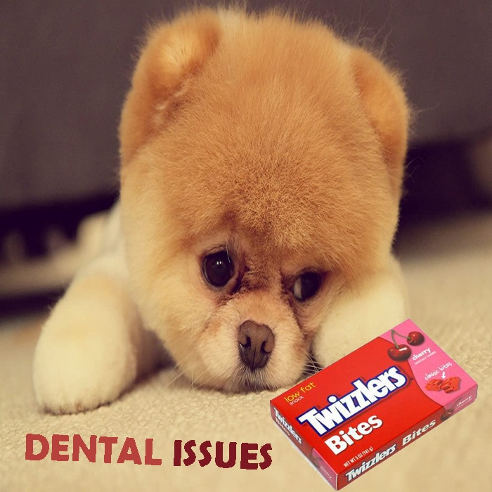 DENTAL ISSUES