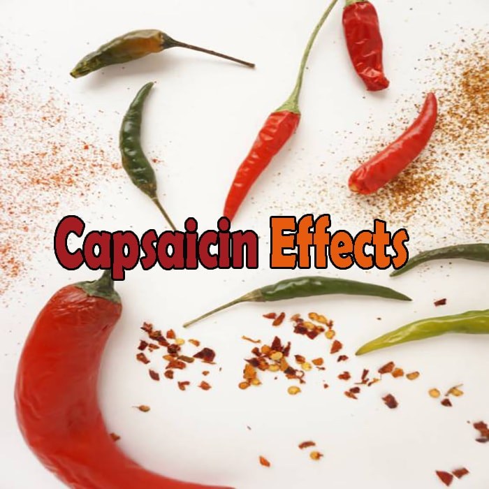 Capsaicin's Effects on Dogs