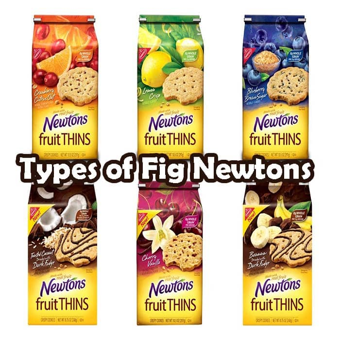 Types of Fig Newtons and possible alternatives for Dogs